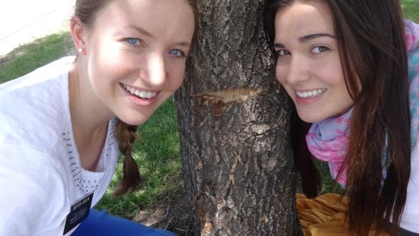 #webeatthetree